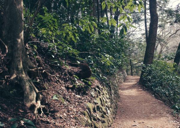 Le chemin à emprunter pour se rendre au Mont Takao, une promenade facile depuis Tokyo