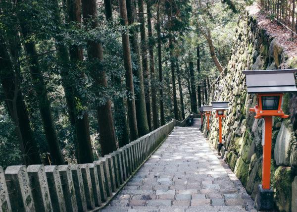 des escaliers s'enfoncent dans la forêt de Kurama, près de Kyoto