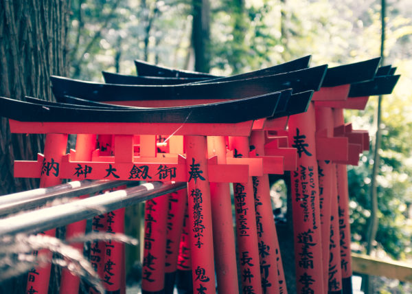 Des petits toris couverts de prières sur les chemins du fushimi inari, à Kyoto