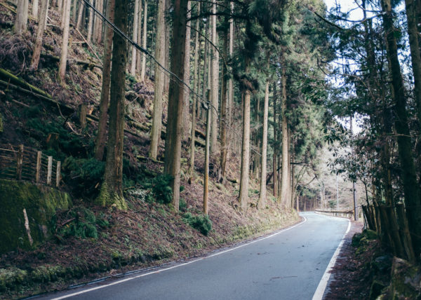 Une petite route unique serpente dans les montagnes japonaises, entourée par la forêt